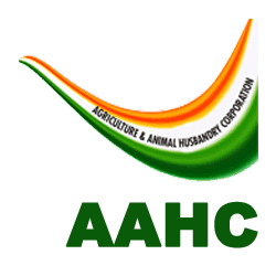 Agriculture and Animal Husbandry Corporation