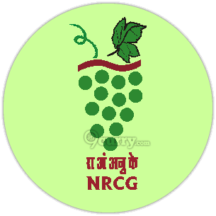 National Research Centre for Grapes (ICAR-NRCG)