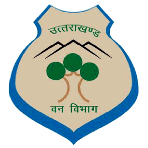 how to get job in forest department