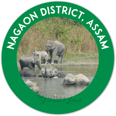 Nagaon District, Assam