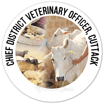 Office Of The Chief District Veterinary Officer (CDVO), Cuttack, Odisha
