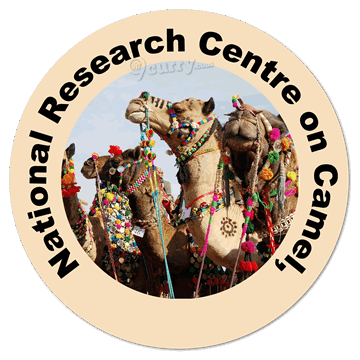 National Research Centre On Camel (ICAR-NRCC)