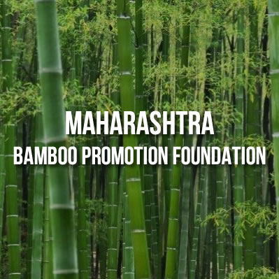 Maharashtra Bamboo Development Board, FDCM