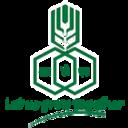 Rashtriya Chemicals and Fertilizers Limited (RCF)